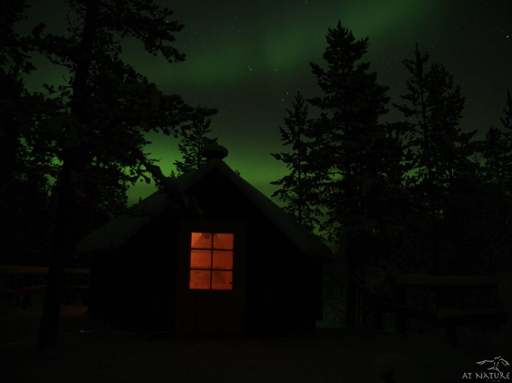 """Kota"" hut under Aurora Borealis."