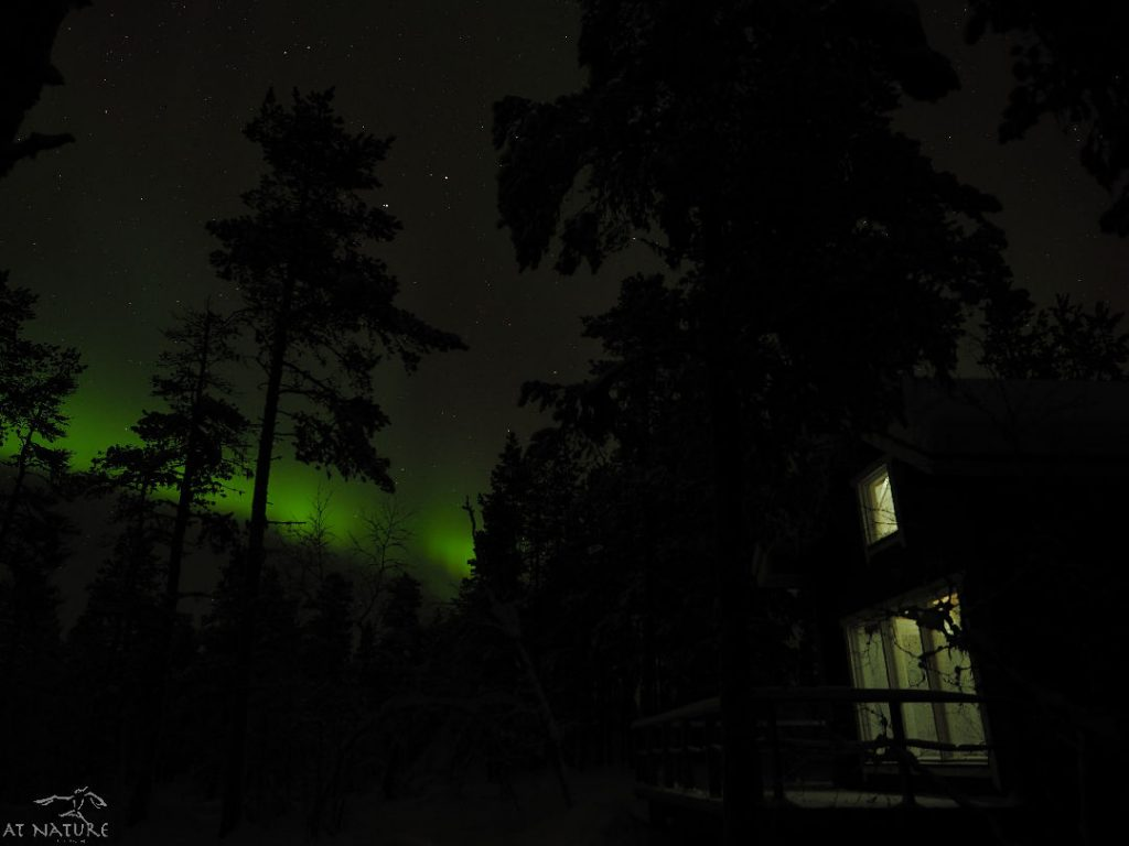 Aurorab borealis and eco-friendly sauna cabin of AT NATURE.