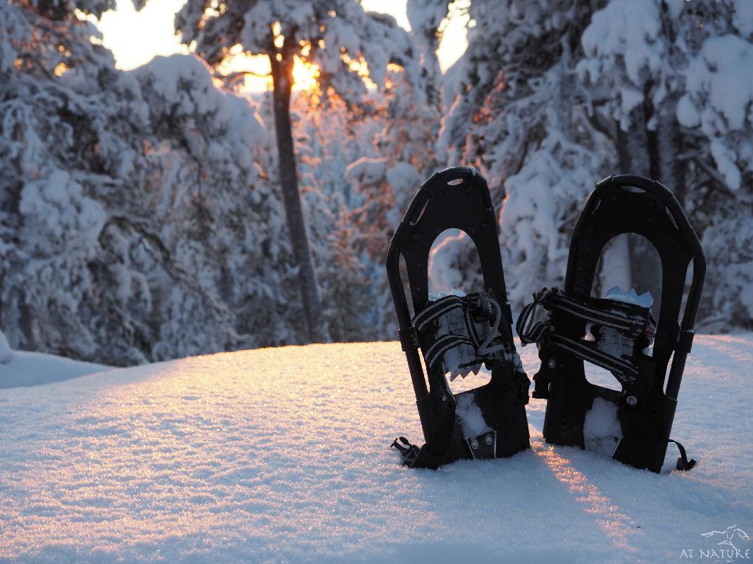 AT Nature snowshoes at sunset.