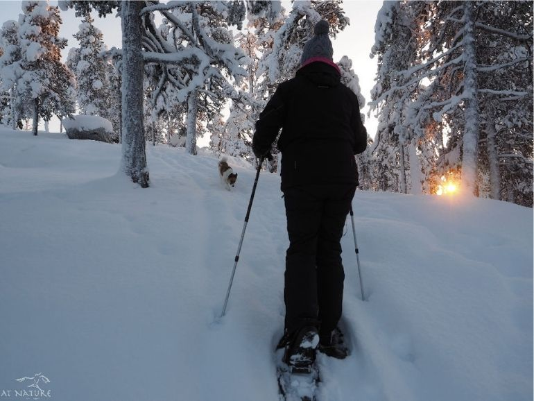 Terhi kävelee AT Naturen lumikengillä Hiski seuranaan.